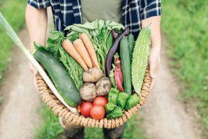 食べて健康に!今こそ求められる「医食同源」 無農薬農法のプロラボファームがスタート