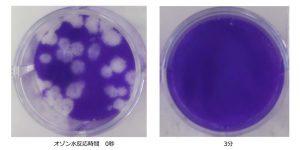 オゾン水ミストによる新型コロナウイルスの不活化を実証 〜フジ医療器〜