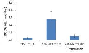 「大麦若葉エキス末」の骨格筋への糖取り込み促進作用が明らかに〜東洋新薬〜